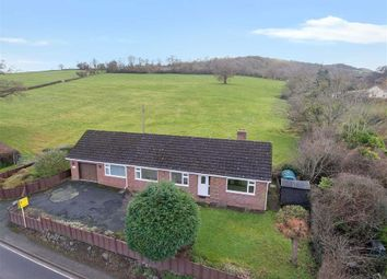 Thumbnail 3 bedroom detached bungalow for sale in Crew Green, Shrewsbury