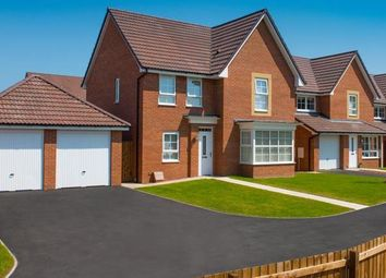 """Thumbnail 3 bedroom semi-detached house for sale in """"Moresby"""" at Tenth Avenue, Morpeth"""