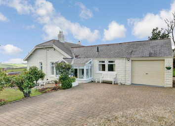 Thumbnail 4 bed bungalow for sale in Lanchester Road, Maiden Law, Lanchester, Durham