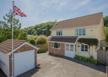 Thumbnail 4 bed detached house for sale in Wilton Way, Abbotskerswell, Newton Abbot
