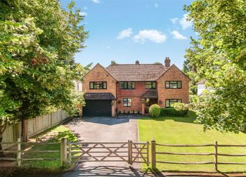 Thumbnail 5 bed detached house for sale in Limes Avenue, Horley, Surrey
