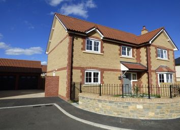 Thumbnail 5 bed property to rent in Trull, Taunton