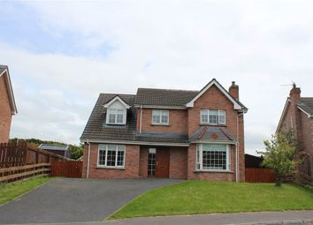 Thumbnail 4 bed detached house for sale in Fullerton Road, Newry