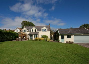 Thumbnail 4 bed property for sale in Stone Allerton, Axbridge