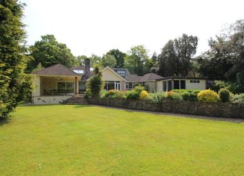 Thumbnail 5 bed detached house for sale in Burton Road, Branksome Park, Poole, Dorset