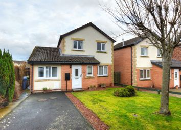 Thumbnail 4 bed detached house for sale in Allerburn Lea, Alnwick, Northumberland