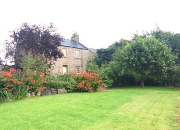 Thumbnail 5 bed detached house to rent in Castle Street, Brechin
