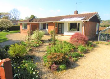 4 bed detached bungalow for sale in Pinefields Close, West Hill, Ottery St. Mary EX11