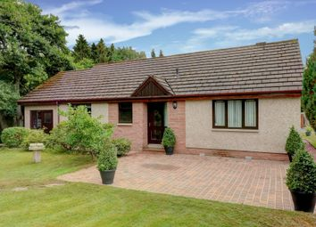 Thumbnail 4 bed bungalow for sale in Glendene Park, Amisfield, Dumfries