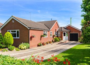 Thumbnail 3 bed detached bungalow for sale in Vicarage Road, South Clifton