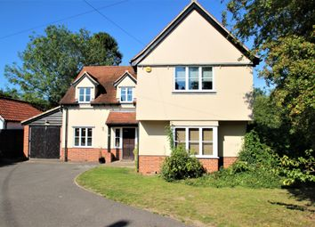 Thumbnail 4 bed detached house to rent in Upper Holt Street, Colchester, Essex