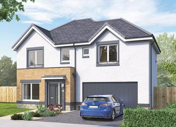 "Thumbnail 4 bed detached house for sale in ""The Westbury"" at Brora Crescent, Hamilton"