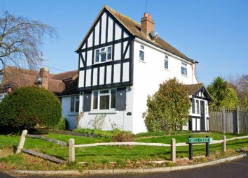Thumbnail 3 bed detached house for sale in Lion Hill, Eastbourne