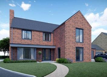 Thumbnail 4 bed detached house for sale in Almond Grove, Brigg