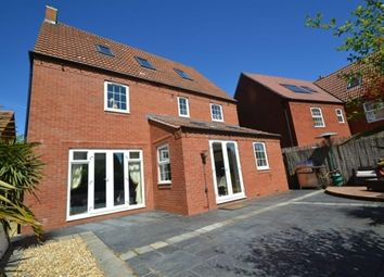 Thumbnail 5 bedroom detached house to rent in Buttercup Walk, Bridgwater