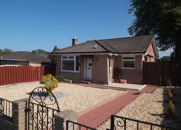 Thumbnail 2 bed bungalow to rent in Halley Place, Dundee