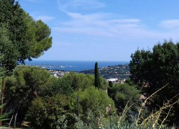 Thumbnail 1 bed apartment for sale in Vallauris (Impiniers), 06220, France