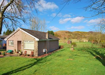 Thumbnail 2 bed bungalow for sale in The Firs, 3 Cathlaw Lane, Torphichen