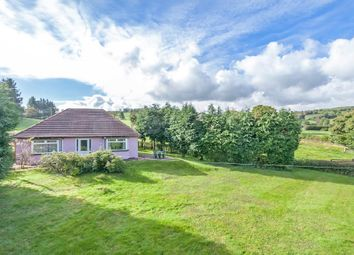 Thumbnail 2 bed detached bungalow for sale in Pant-Y-Dwr, Rhayader
