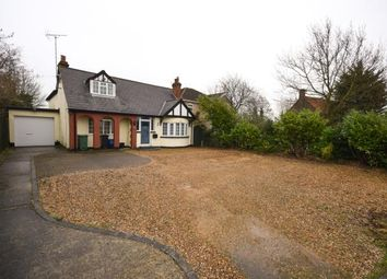 Thumbnail 4 bed bungalow for sale in Maldon Road, Burnham-On-Crouch