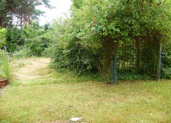 Thumbnail 4 bed detached bungalow for sale in Miles Avenue, Sandford, Wareham