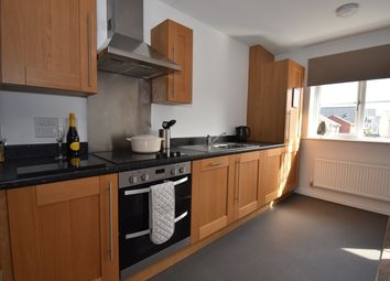 Thumbnail 2 bedroom semi-detached house to rent in Seven Acres, Cranbrook, Exeter