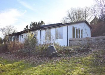 Thumbnail 4 bed detached house for sale in Llanon