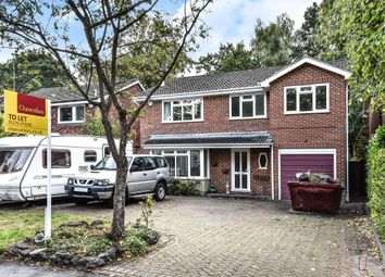 Thumbnail 5 bed detached house to rent in Windlesham GU20,