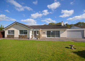 Thumbnail 3 bed detached bungalow for sale in Pencnwc Isaf, Cross Inn, Nr New Quay