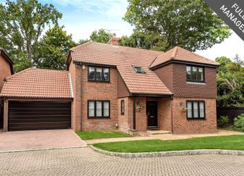 Thumbnail 5 bed detached house to rent in Napier Drive, Camberley, Surrey
