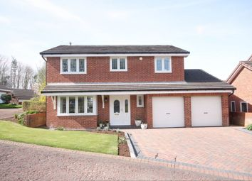 Thumbnail 4 bed detached house for sale in Dentdale, Houghton Le Spring