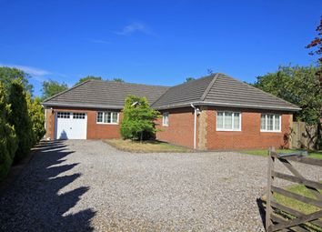 Thumbnail 4 bed detached bungalow for sale in Black Lion Road, Gorslas, Cross Hands, Carmarthenshire
