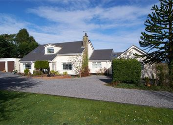 Thumbnail 4 bed detached bungalow for sale in Dulas, Dulas, Anglesey
