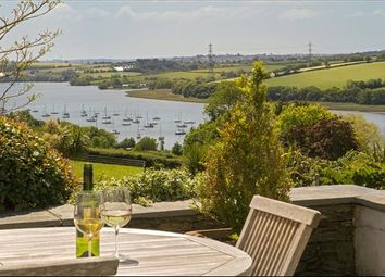 Thumbnail 5 bed detached house for sale in Weir Quay, Yelverton, Devon
