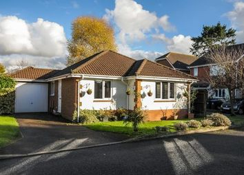 Thumbnail 2 bed detached bungalow for sale in Westfield, Woking