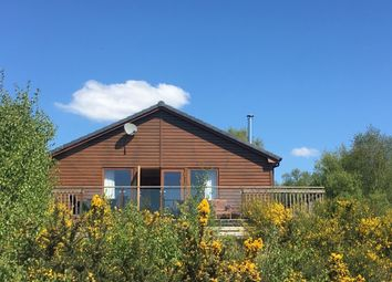 Thumbnail 3 bed detached bungalow for sale in Whin, Drumwhinny, Colvend