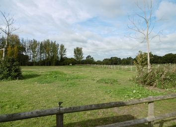 Thumbnail 1 bed mobile/park home to rent in Firwood Court, Bullockstone Road, Herne Bay, Kent