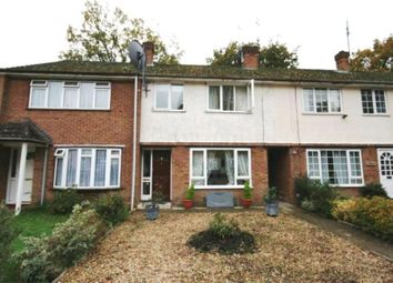 Thumbnail 3 bed property to rent in Barnsbury Farm, Woking, Surrey