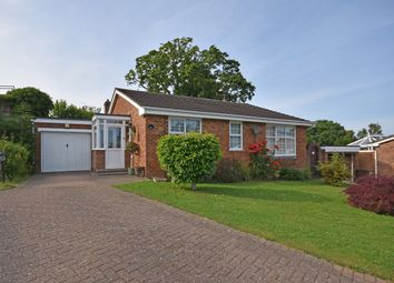 Thumbnail 3 bed detached bungalow for sale in North Ridge, Northiam