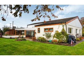 Thumbnail 4 bed detached bungalow for sale in Plough Road, Tibberton