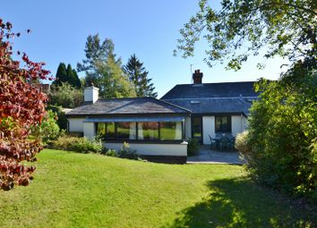 Thumbnail Cottage to rent in Byworth, Near Petworth, West Sussex