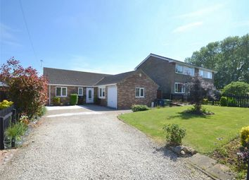 Thumbnail 4 bedroom detached bungalow for sale in Rodney Road, Hartford, Huntingdon, Cambridgeshire