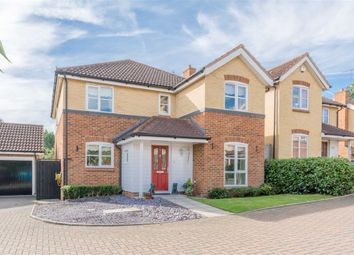 Thumbnail 4 bed detached house for sale in Auber Close, Hoddesdon, Hertfordshire
