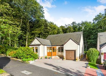 Thumbnail 4 bed detached bungalow for sale in New Gill Haw, Moscow, Galston