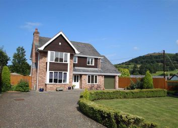 Thumbnail 5 bed detached house for sale in Maesmawr Road, Llangollen