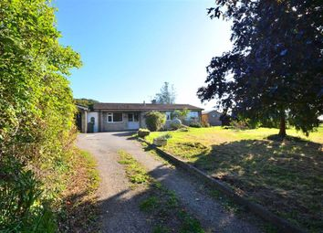 Thumbnail 4 bed bungalow to rent in Brookthorpe, Gloucestershire