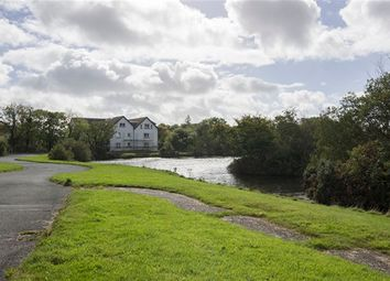 Thumbnail 2 bed flat to rent in The Mallards, Mount Murray, Braddan, Isle Of Man