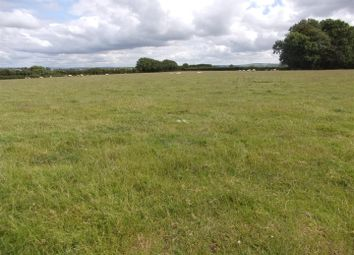 Thumbnail Land for sale in Approx. 33 Acres Accommodation Land, Bryngwrog, Beulah