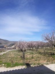 Thumbnail 2 bed cottage for sale in Jalon, Alicante, Valencia, Spain
