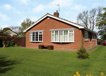 Thumbnail 3 bedroom detached bungalow for sale in Dalton, Thirsk